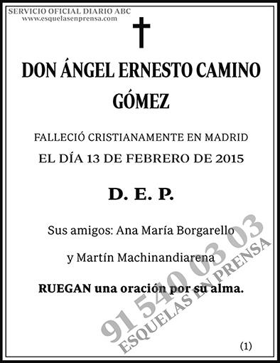 Ángel Ernesto Camino Gómez